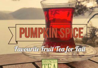 fall tea - pumpkin spice favourite fruit tea