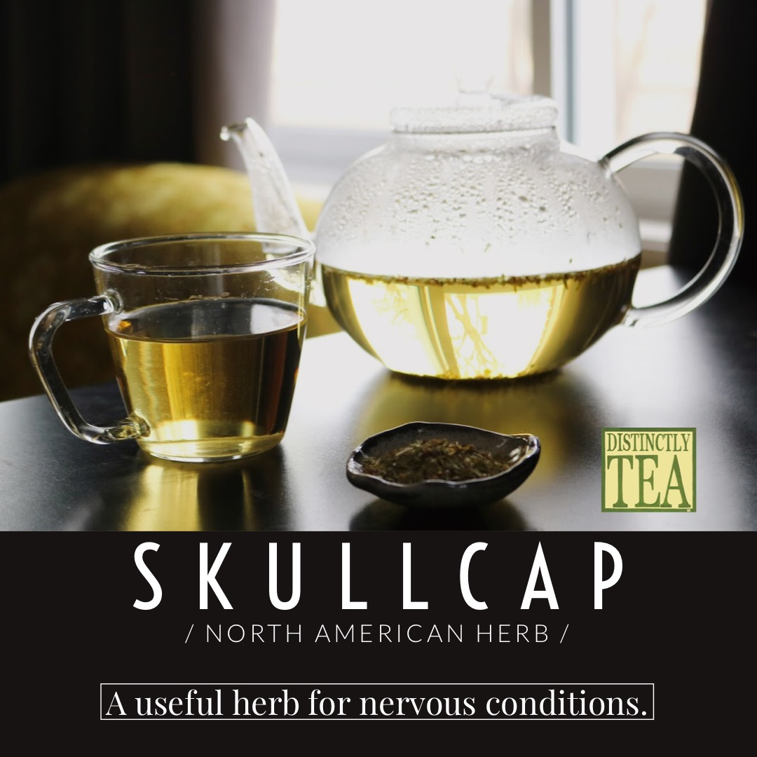 Skullcap tea from distinctly tea inc25