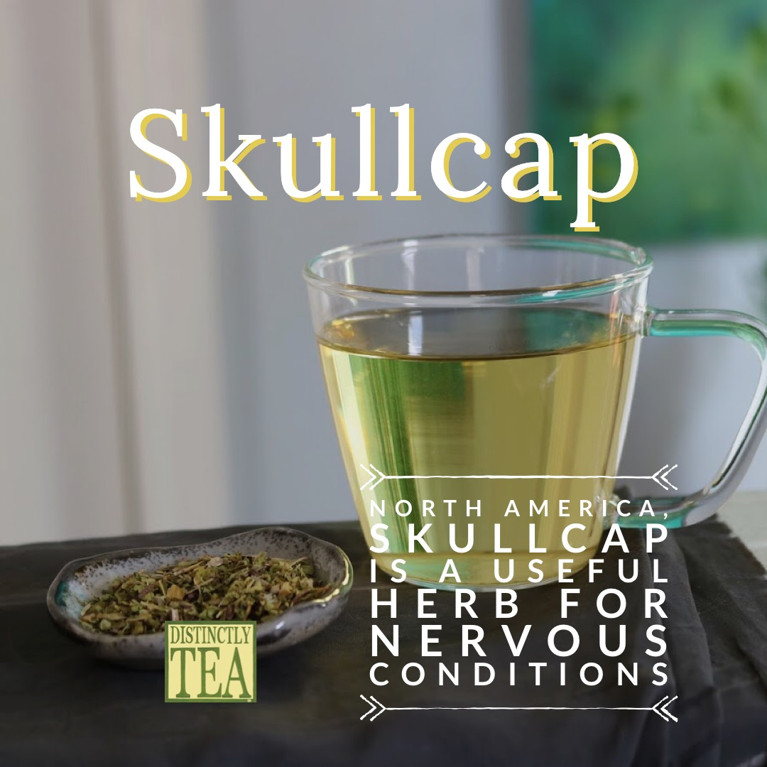 skullcap tea for stress releaf
