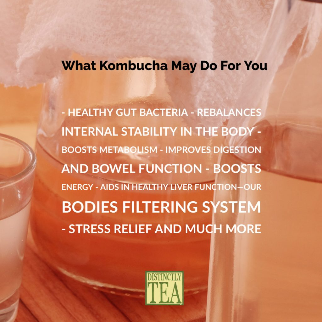 Benefits of kombucha from distinctly tea