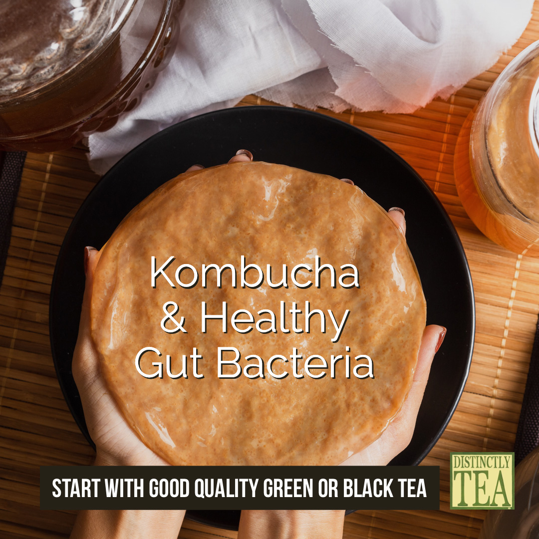 Kombucha tea distinctly tea for healthy gut tea