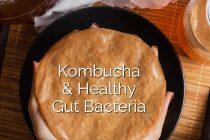 Kombucha tea distinctly tea for healthy gut tea