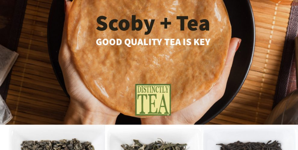good quality tea plus a scoby for kombucha tea recipe