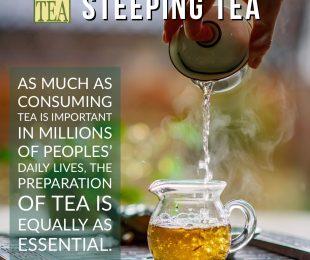 steeping tea part 1 distinctly tea inc
