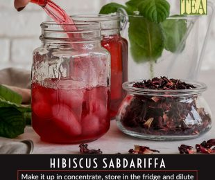 hibiscus tea from distinctly tea